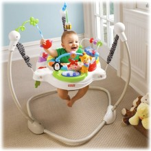 Прыгунки Африка Fisher Price Discover 'n Grow W9466