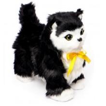 Интерактивный котёнок который ходит Norimpex Черныш