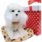Интерактивная собачка Пудель Norimpex Poodle
