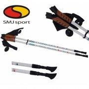 Треккинговые палки SMJ sport Long Life Lite